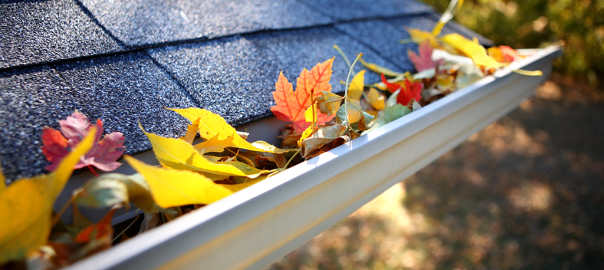 gutter cleaning, gutter washing, raleigh, cary, nc